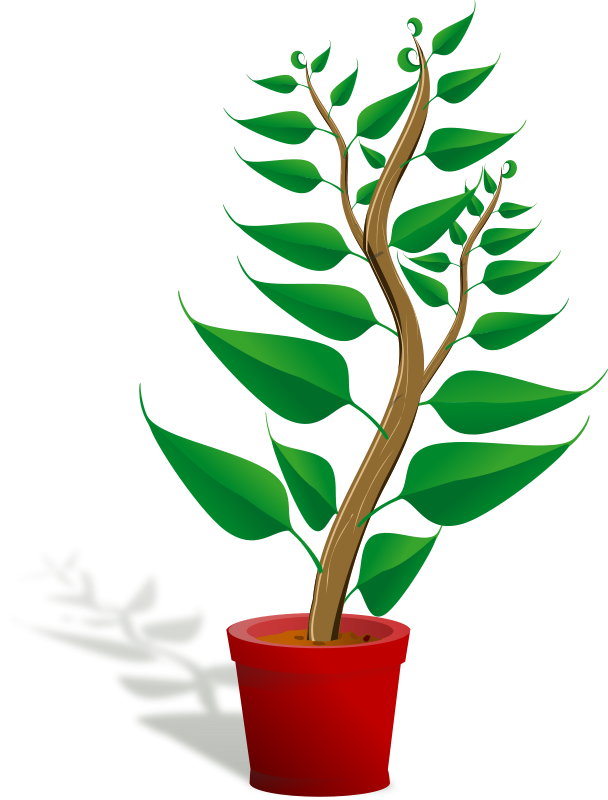 Free Clip Art Green Tall Plant In Its Pot By Palomaironique