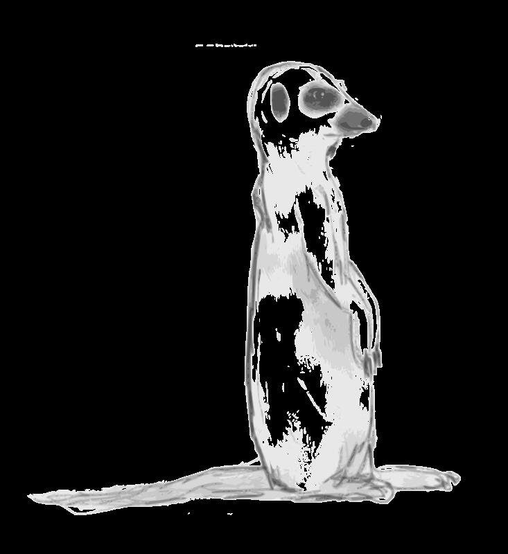 Free Clip Art Meerkat Sketch By Child Of Light