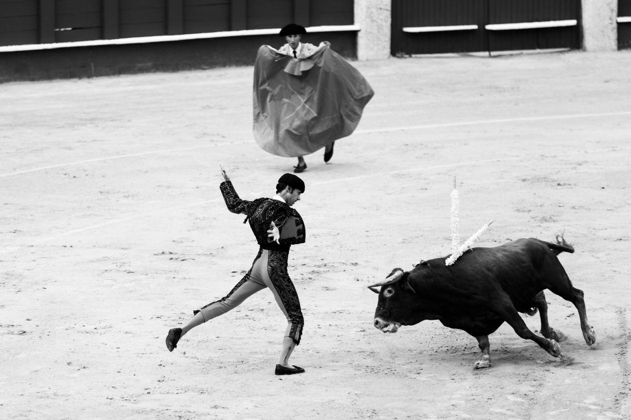 """Free photo """"Málaga"""""""