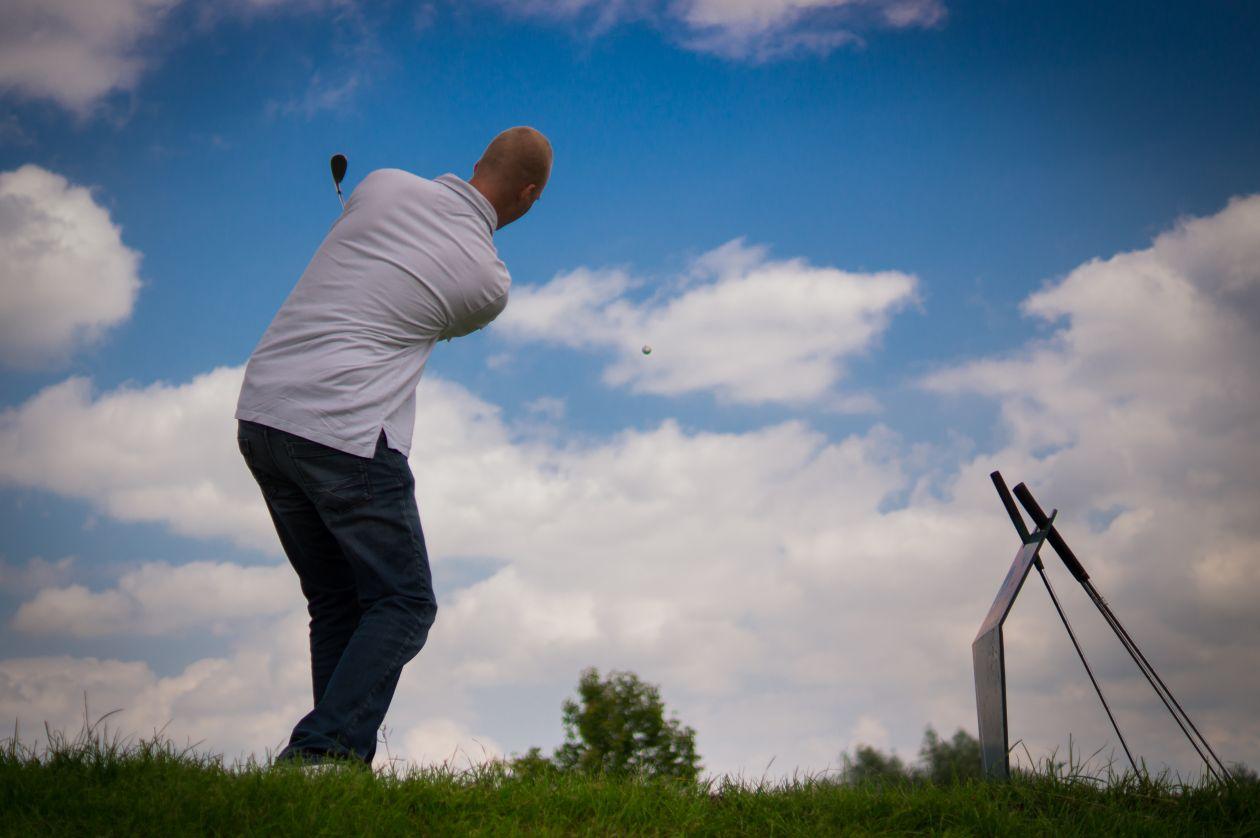 "Free photo ""Great swing"""