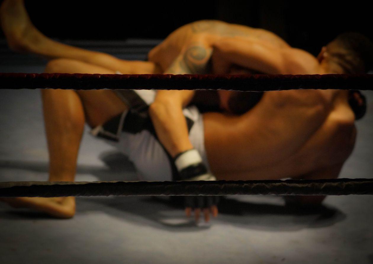 "Free photo ""Ground fight"""