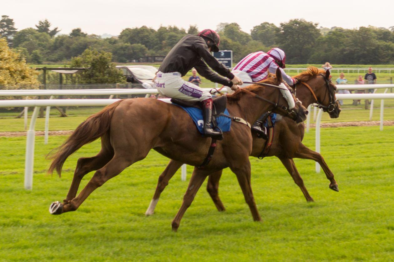 "Free photo ""Horse racing"""