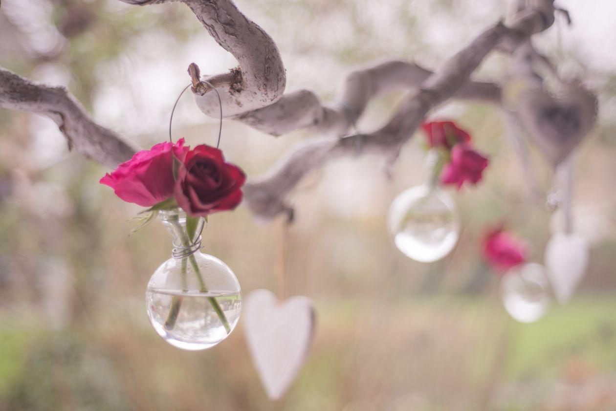 """Free photo """"Bottle of roses"""""""