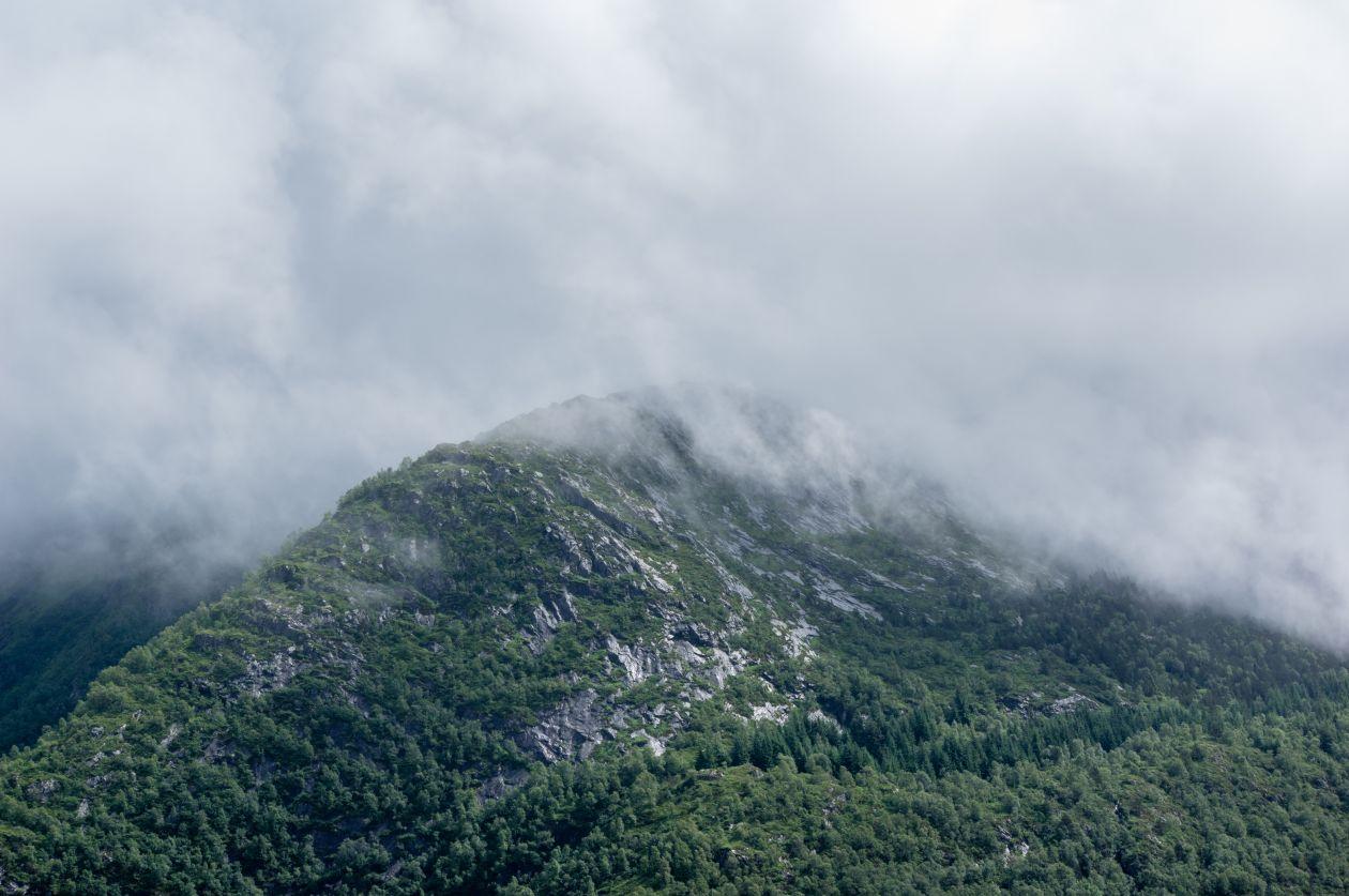 "Free photo ""Bergen"""
