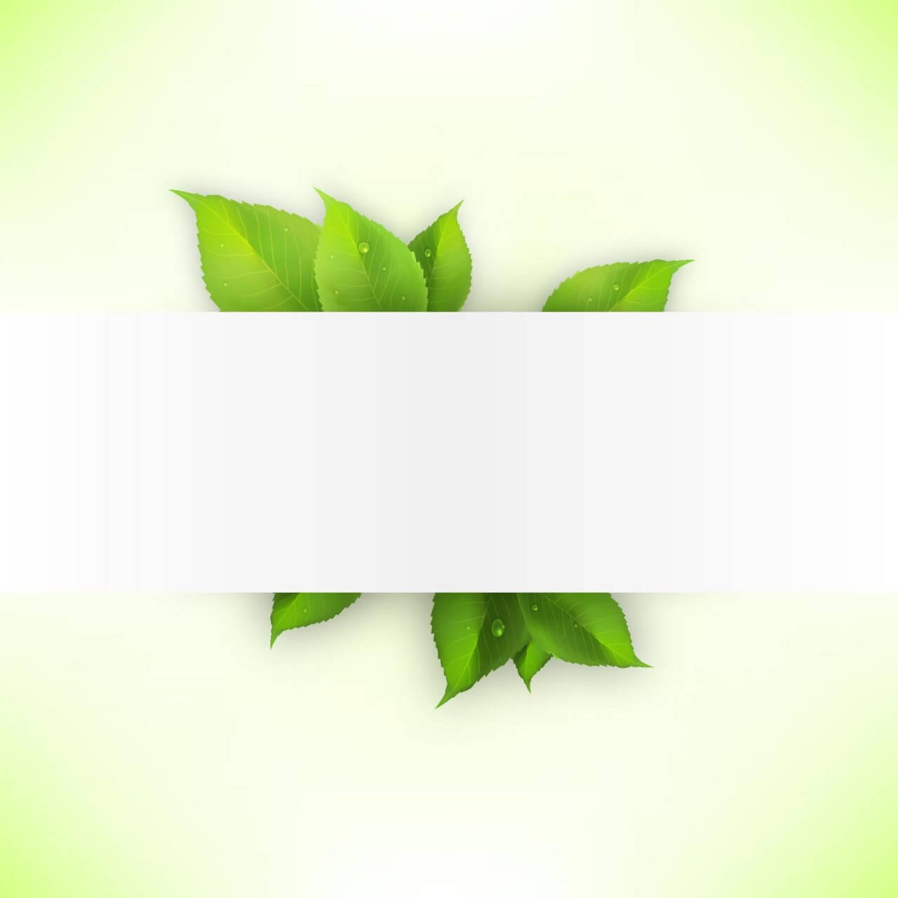 """Free vector """"Realistic green leaves banner"""""""
