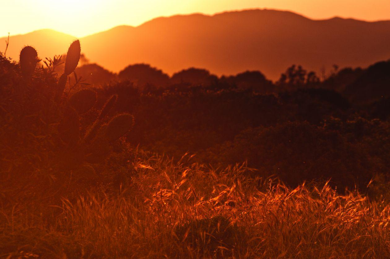 "Free photo ""Sunset"" by Loreta Pavoliene"
