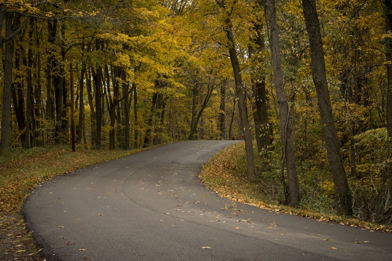 "Free photo ""Road"" by Alex Jones"