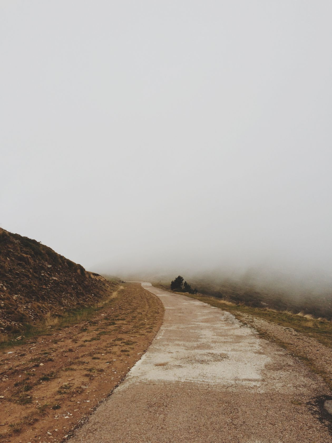"Free photo ""Fog"" by elizabeth lies"