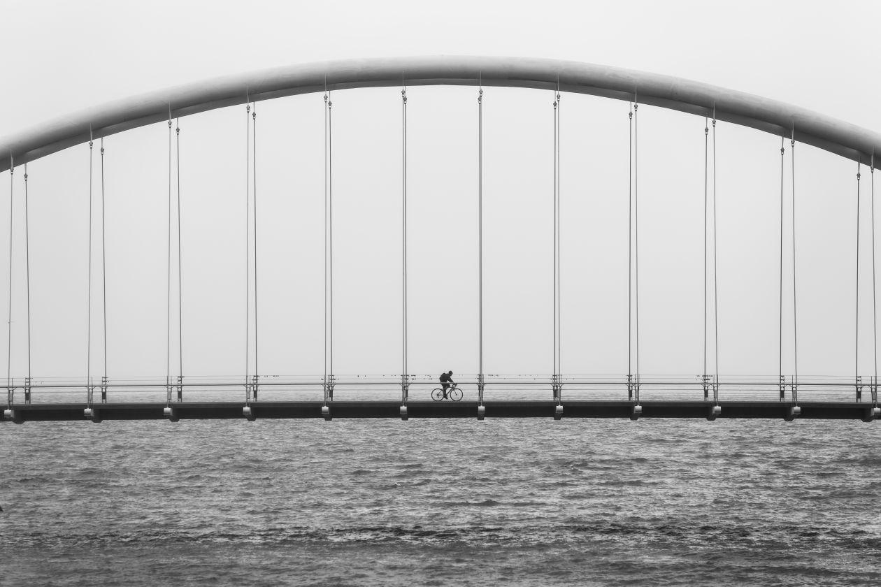 "Free photo ""Bridge"" by Matthew Henry"