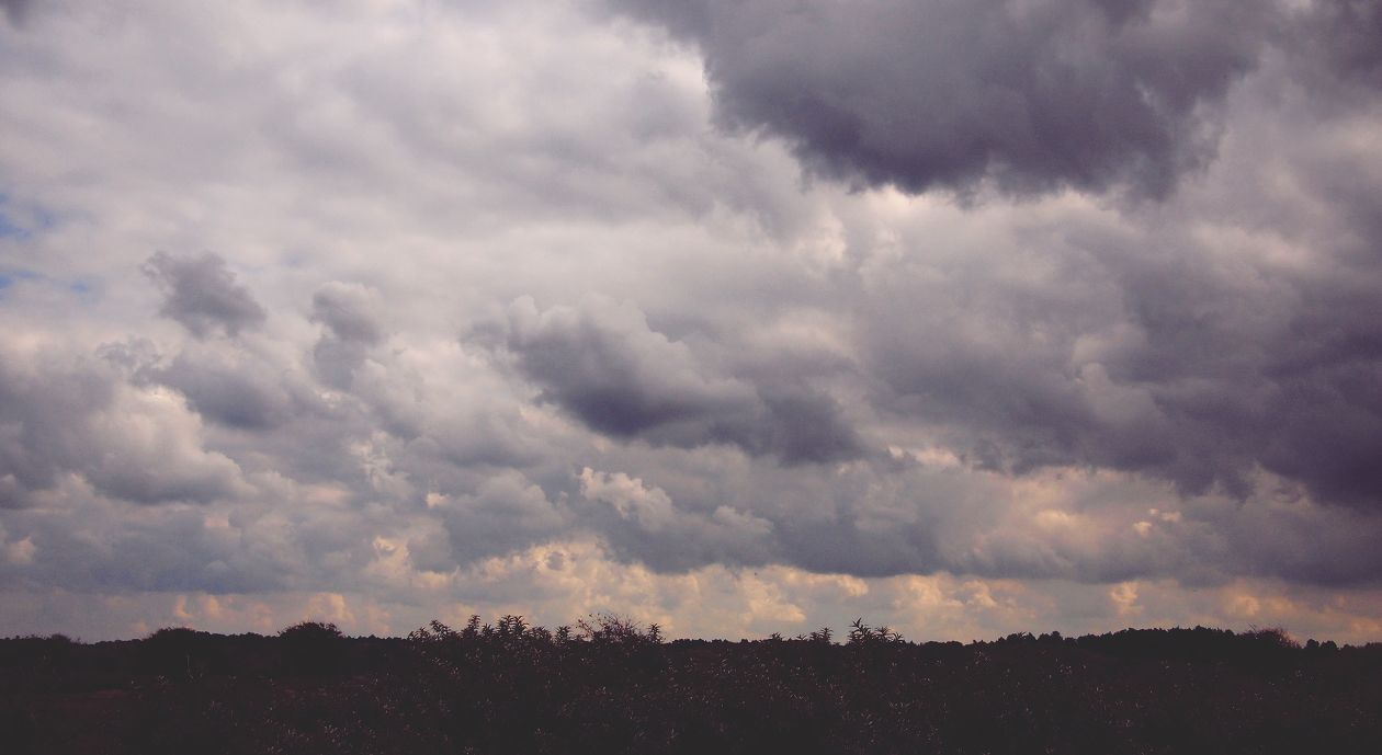 "Free photo ""Cloud"" by Daria Nepriakhina"