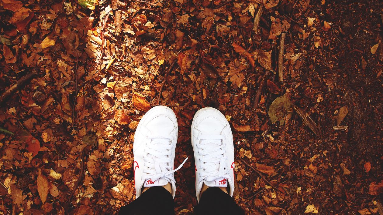 "Free photo ""Sneaker"" by Daria Nepriakhina"