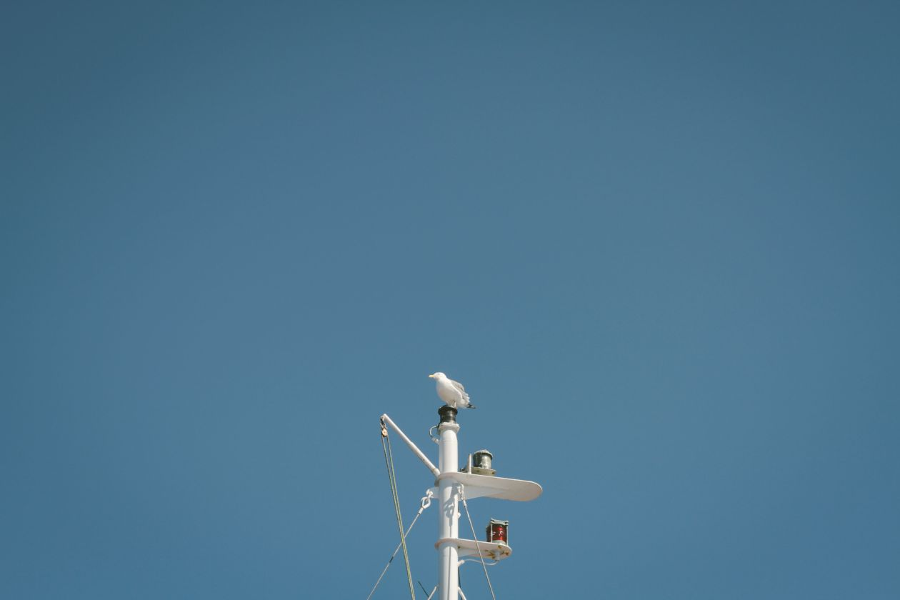 "Free photo ""Mast"" by Dustin Scarpitti"