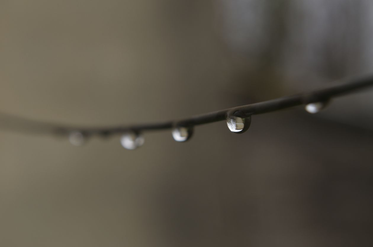 "Free photo ""Drop"" by Carmine De Fazio"