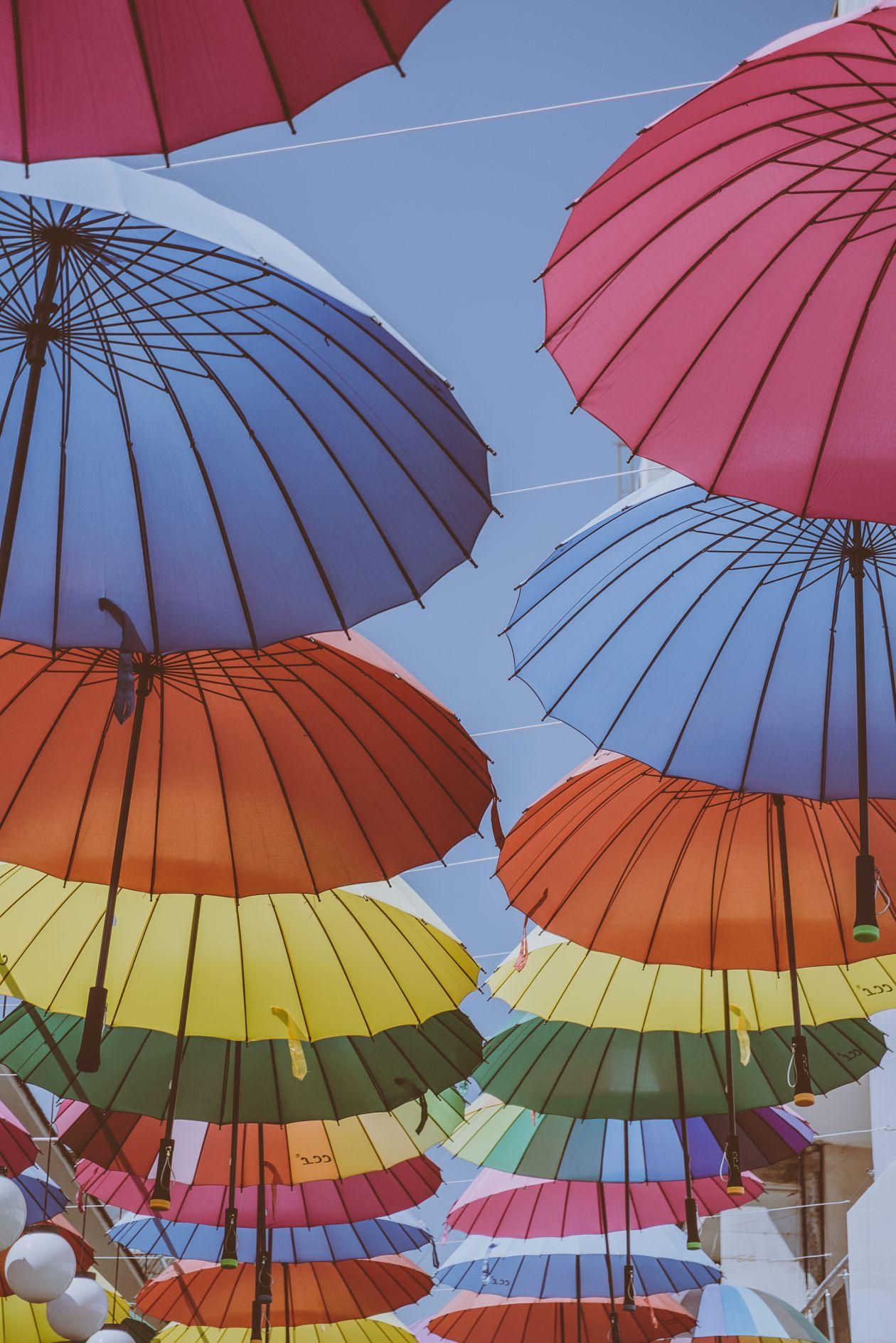 "Free photo ""Umbrella"" by Matthew Wheeler"