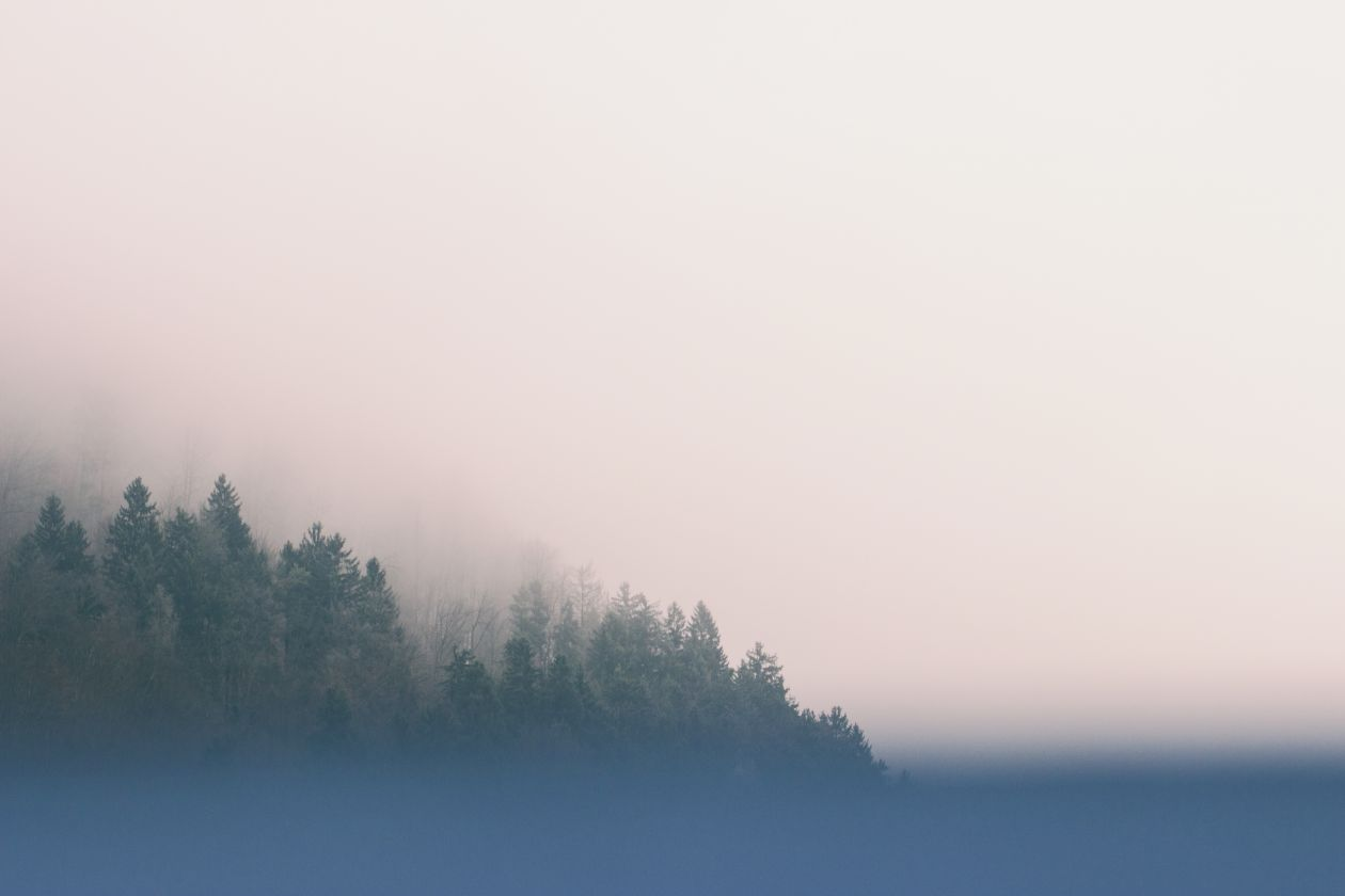 "Free photo ""Fog"" by Majk M."