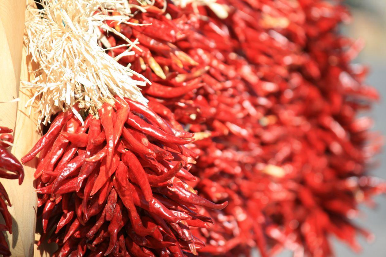 """Free photo """"Pepper"""" by Heijo Reinl"""