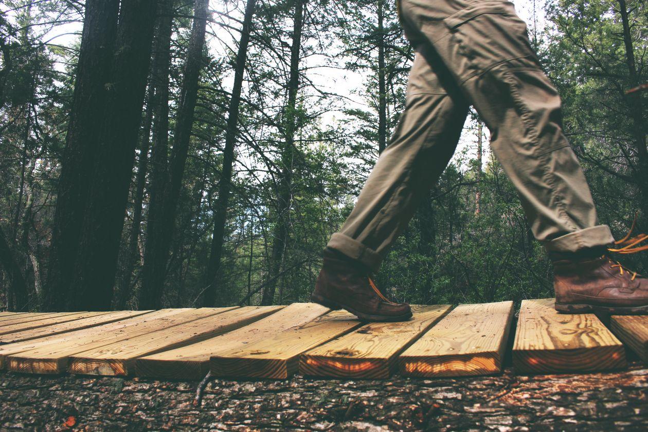 "Free photo ""Walking"" by Lacey Raper"