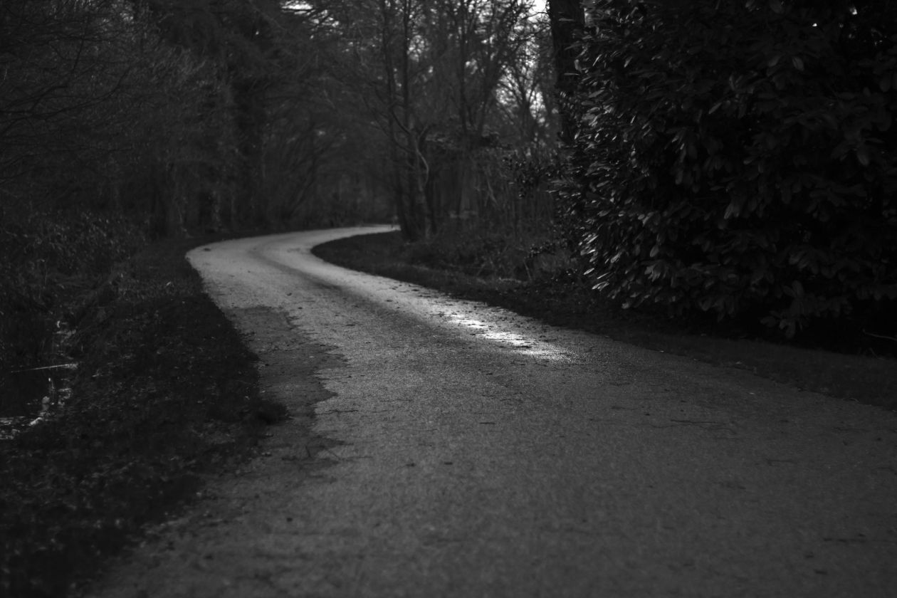 "Free photo ""Road"" by Tirza van Dijk"