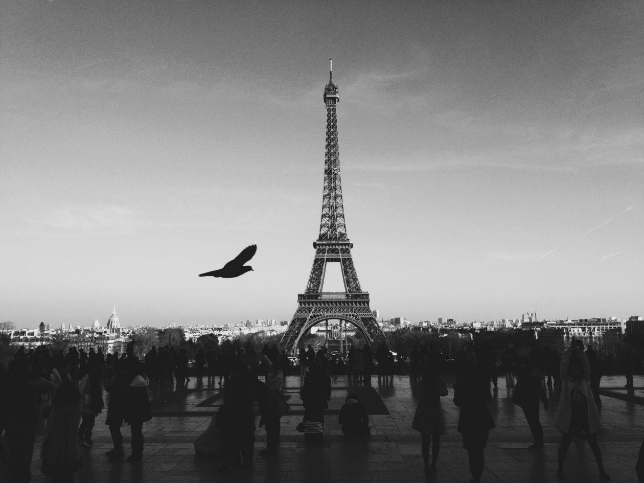 """Free photo """"Paris"""" by Louis Pellissier"""