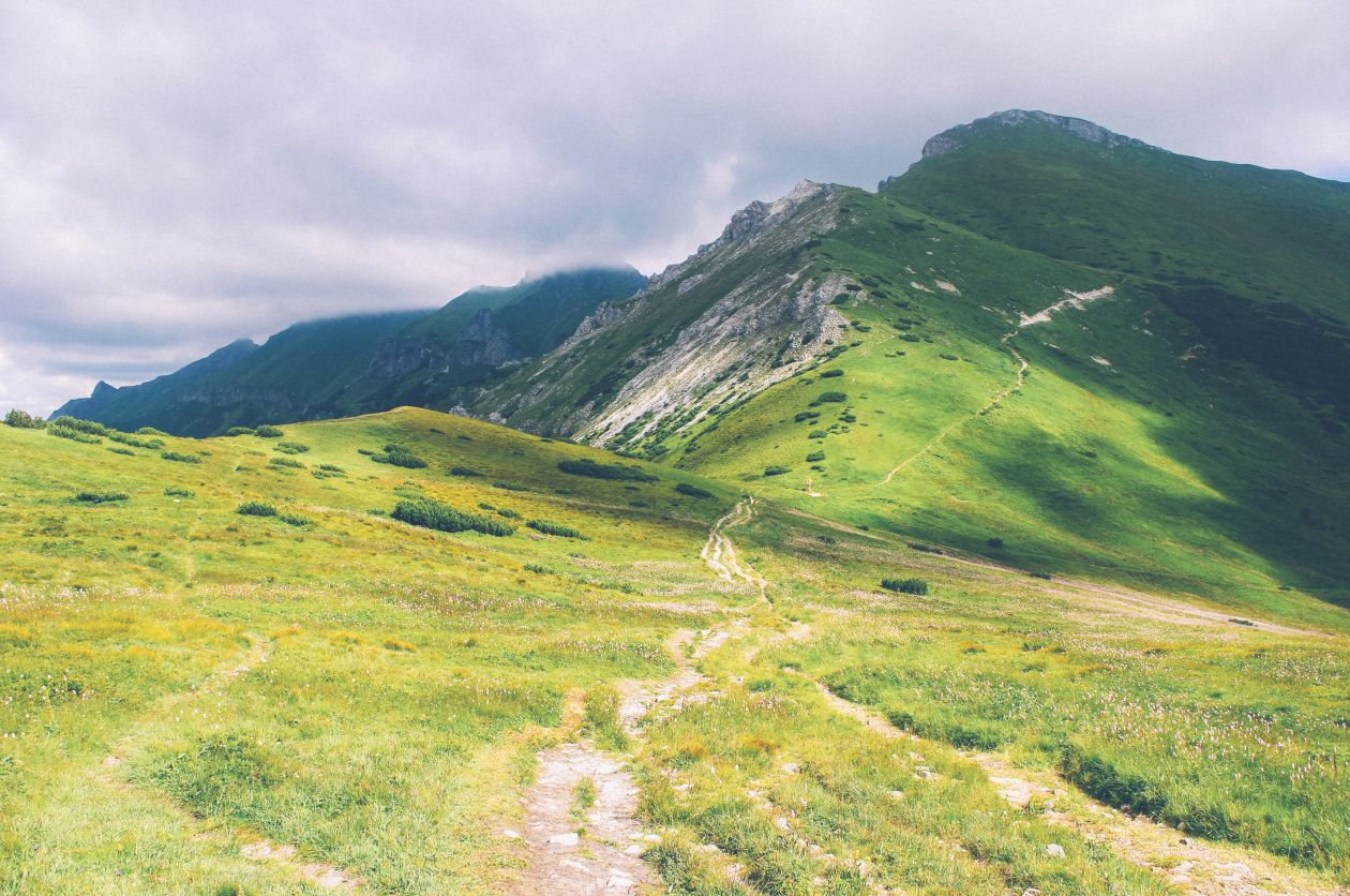 "Free photo ""Path"" by Aleksandra Boguslawska"