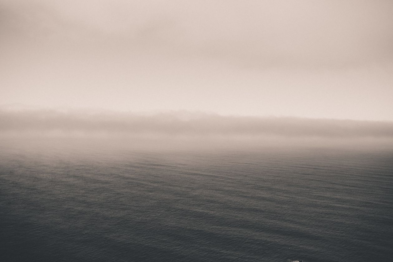 """Free photo """"Fog"""" by Taylor Leopold"""
