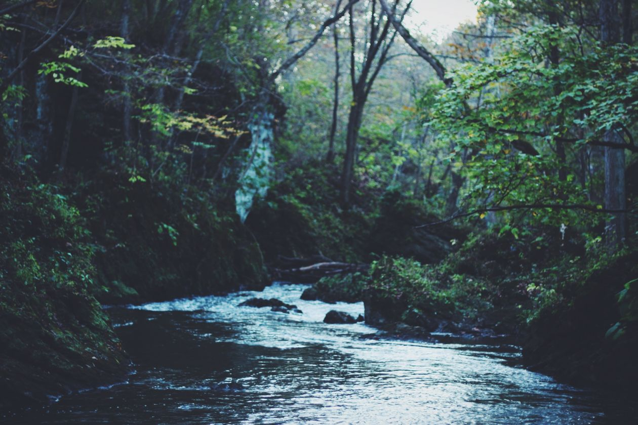 "Free photo ""Stream"" by Caleb George"