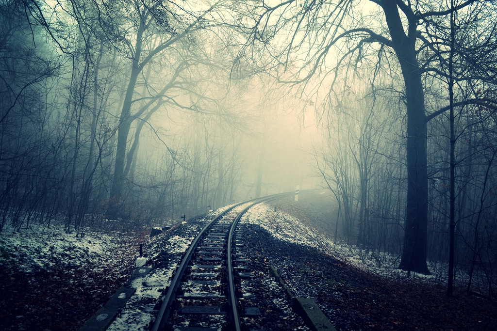 "Free photo ""Spooky"" by Andrea Boldizsar"