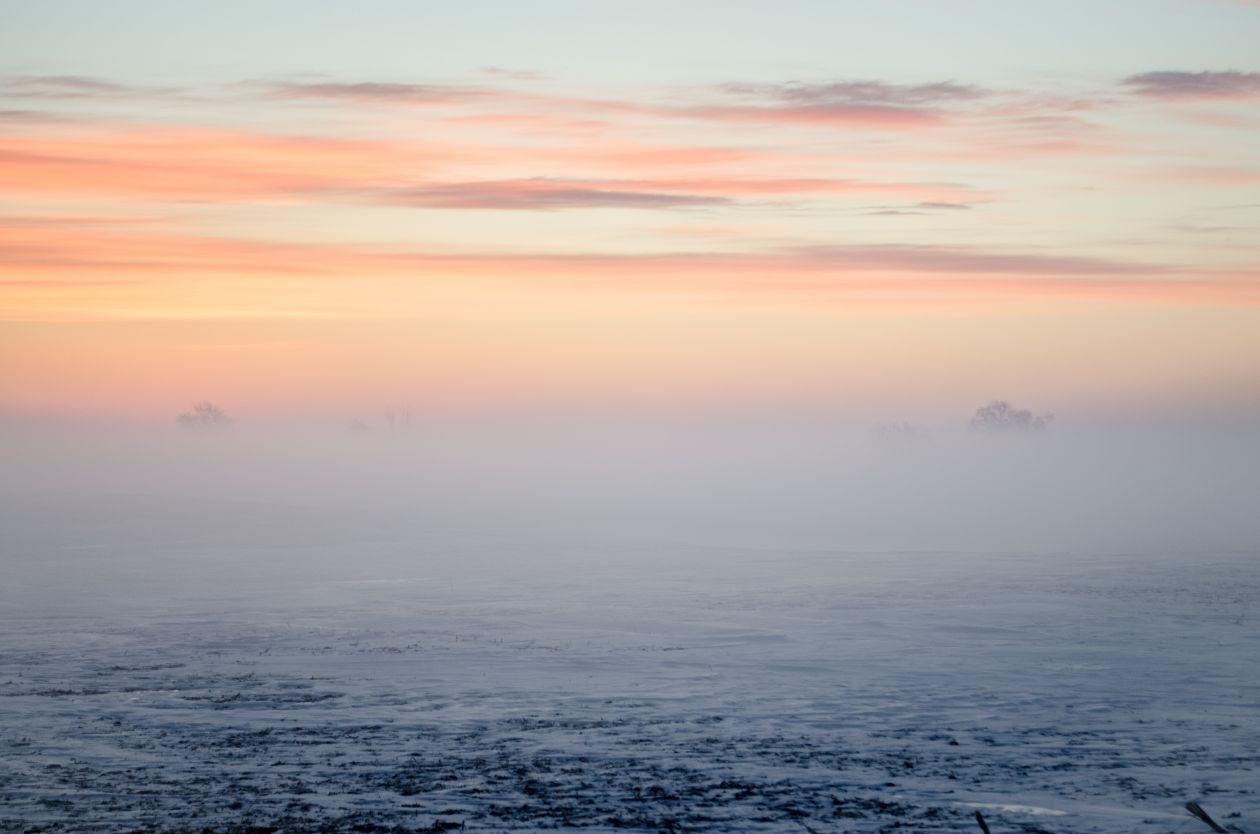 "Free photo ""Fog"" by Kelly Sikkema"