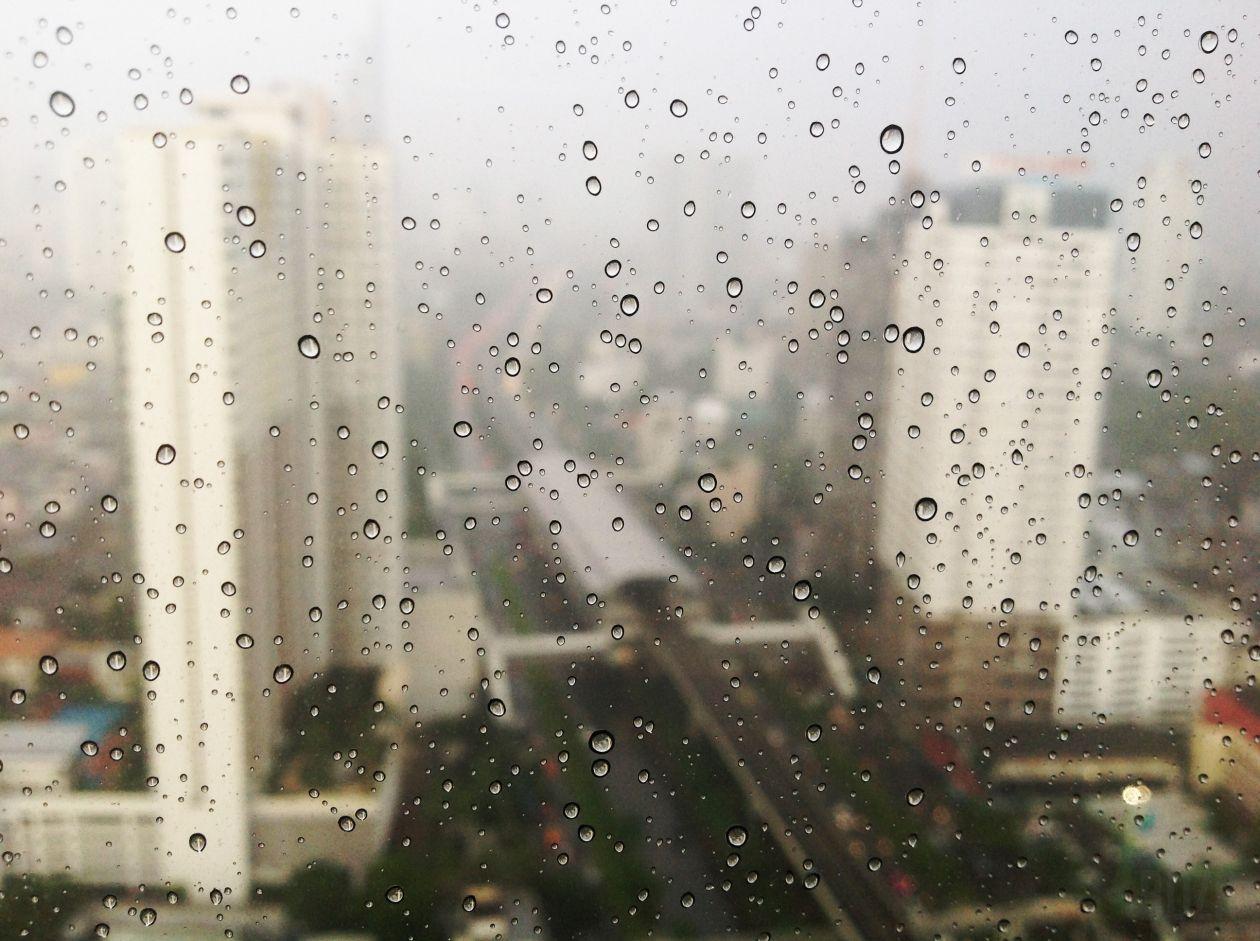 """Free photo """"Rain"""" by Thanun Buranapong"""
