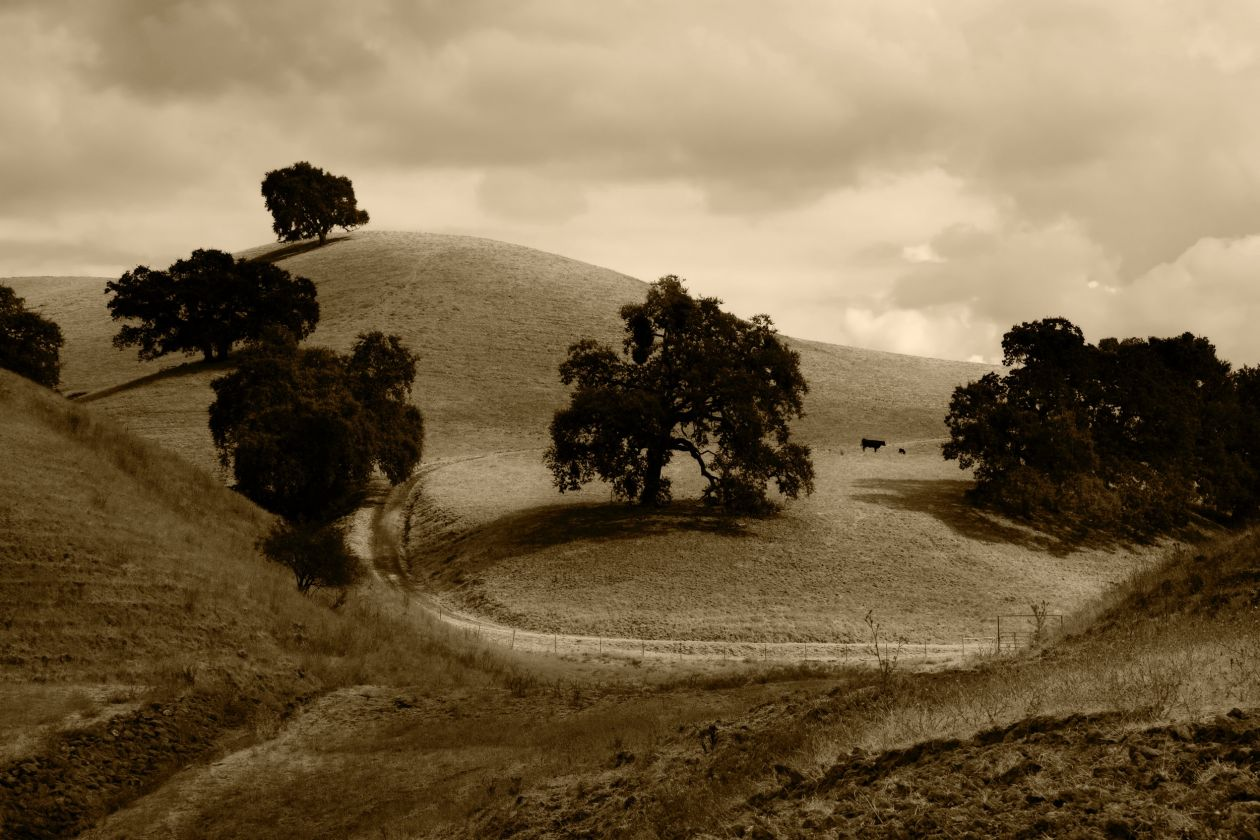 "Free photo ""Hill"" by Noel Lopez"