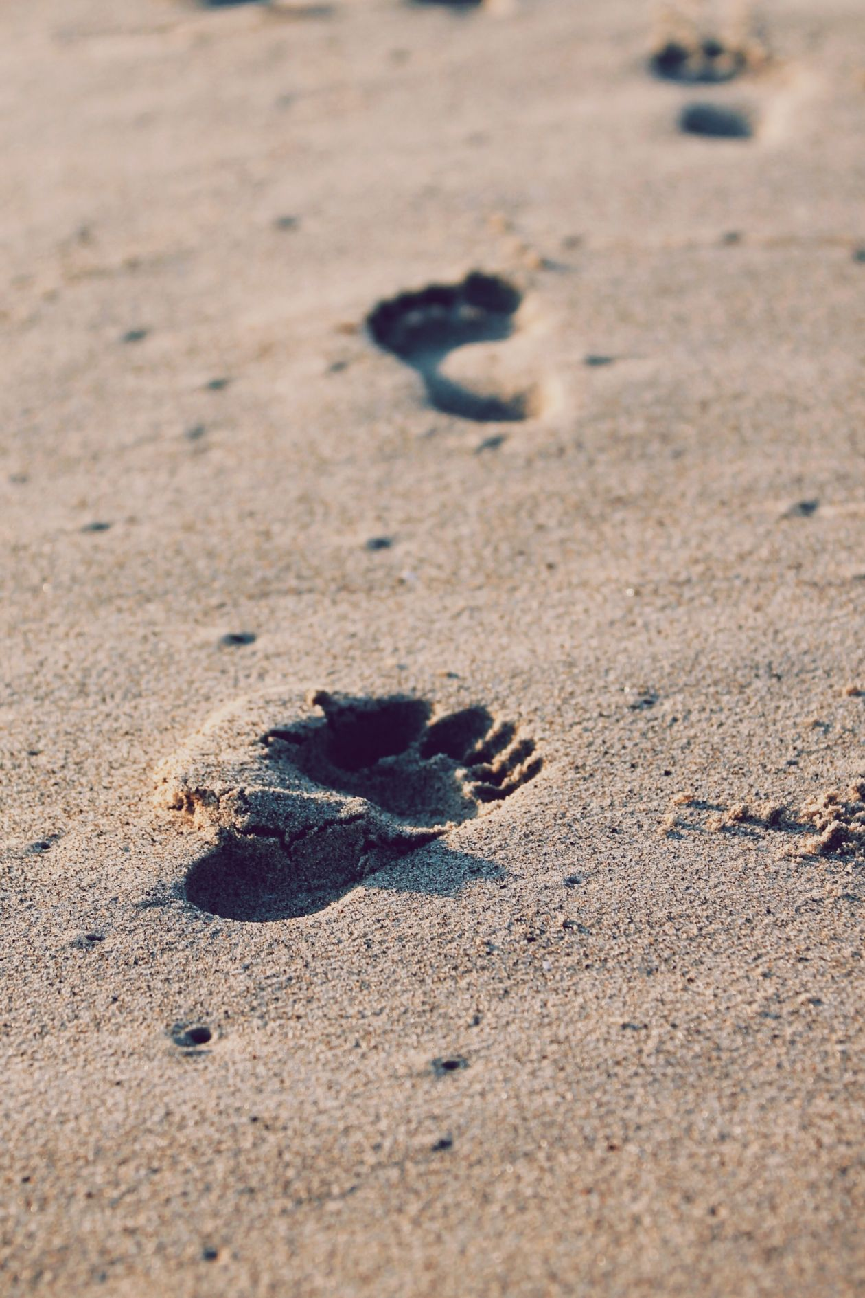 "Free photo ""Footprint"" by Christopher Sardegna"