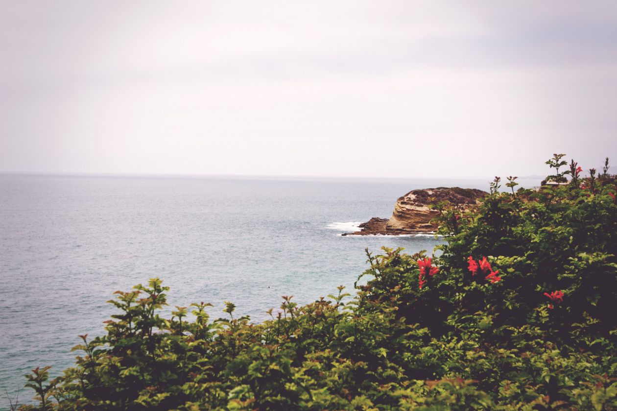 "Free photo ""Coast"" by Austin Neill"
