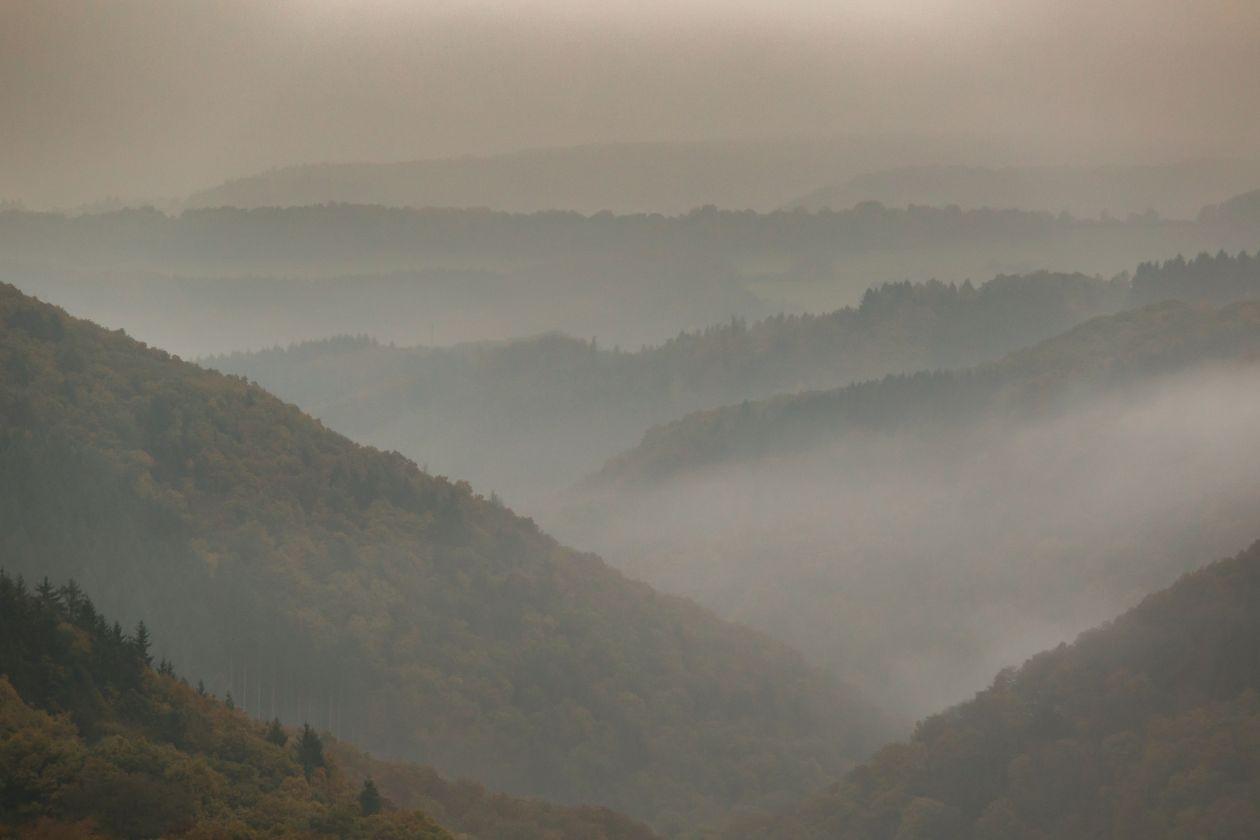 """Free photo """"Foggy landscape"""""""