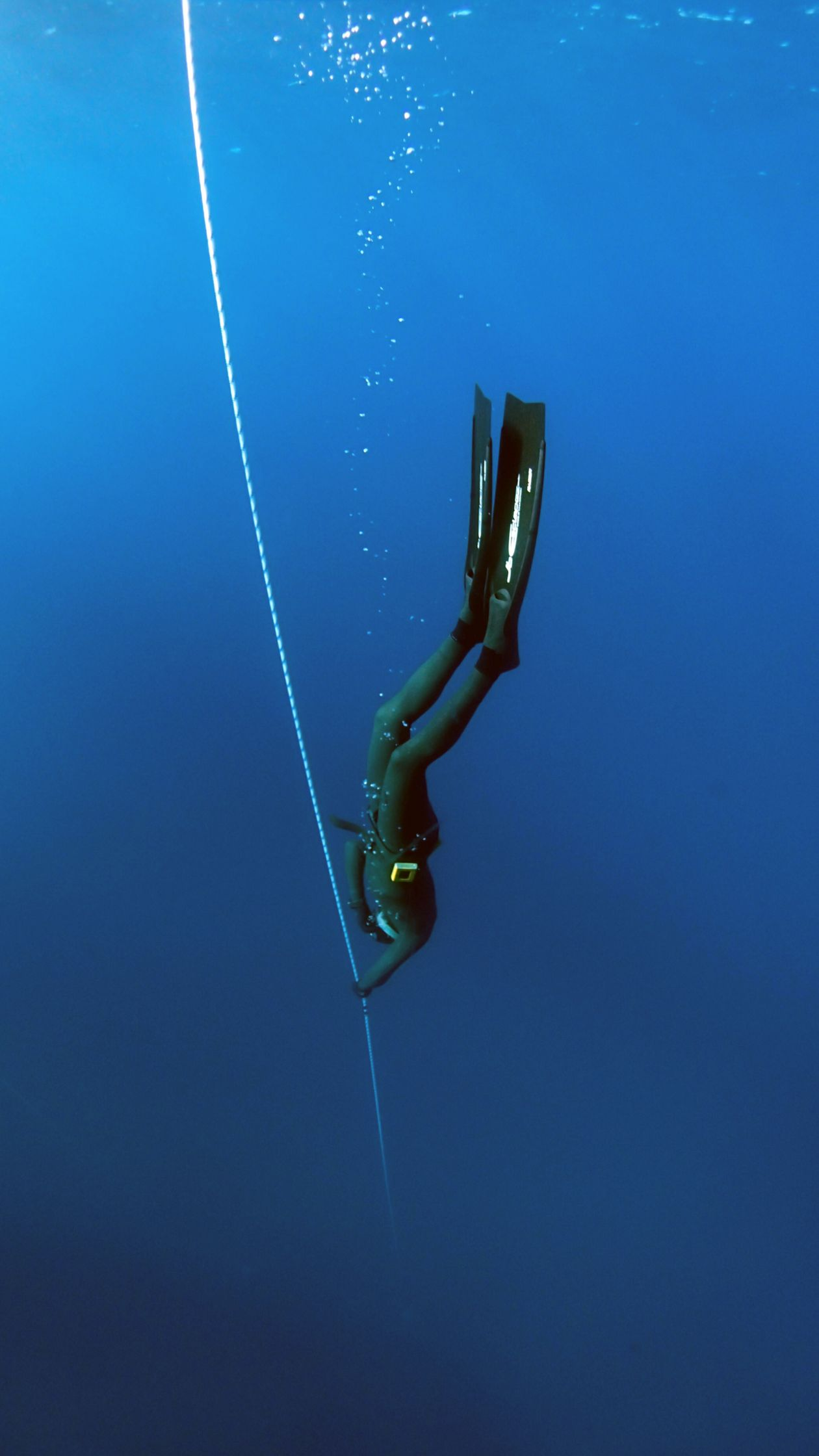"Free photo ""Free Diver"""