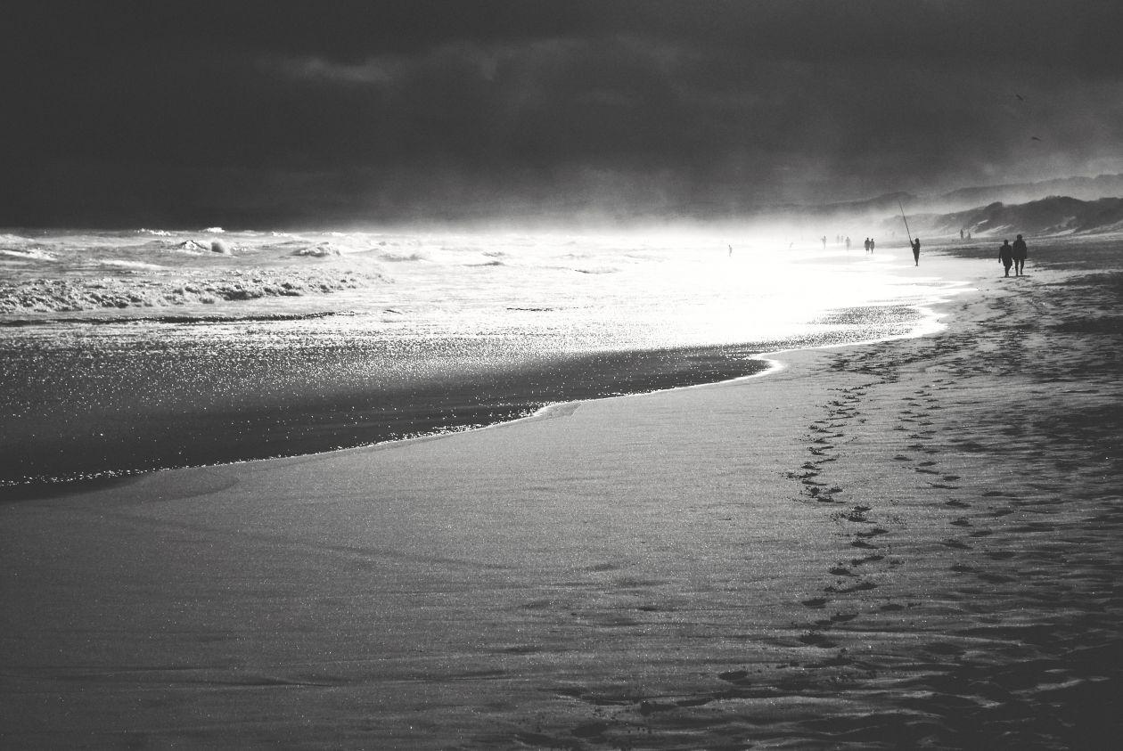 "Free photo ""Walking On The Beach"""