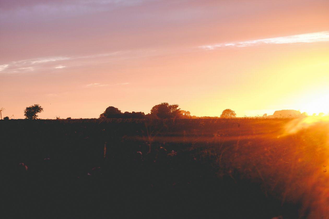 """Free photo """"Sunset Horizon"""""""