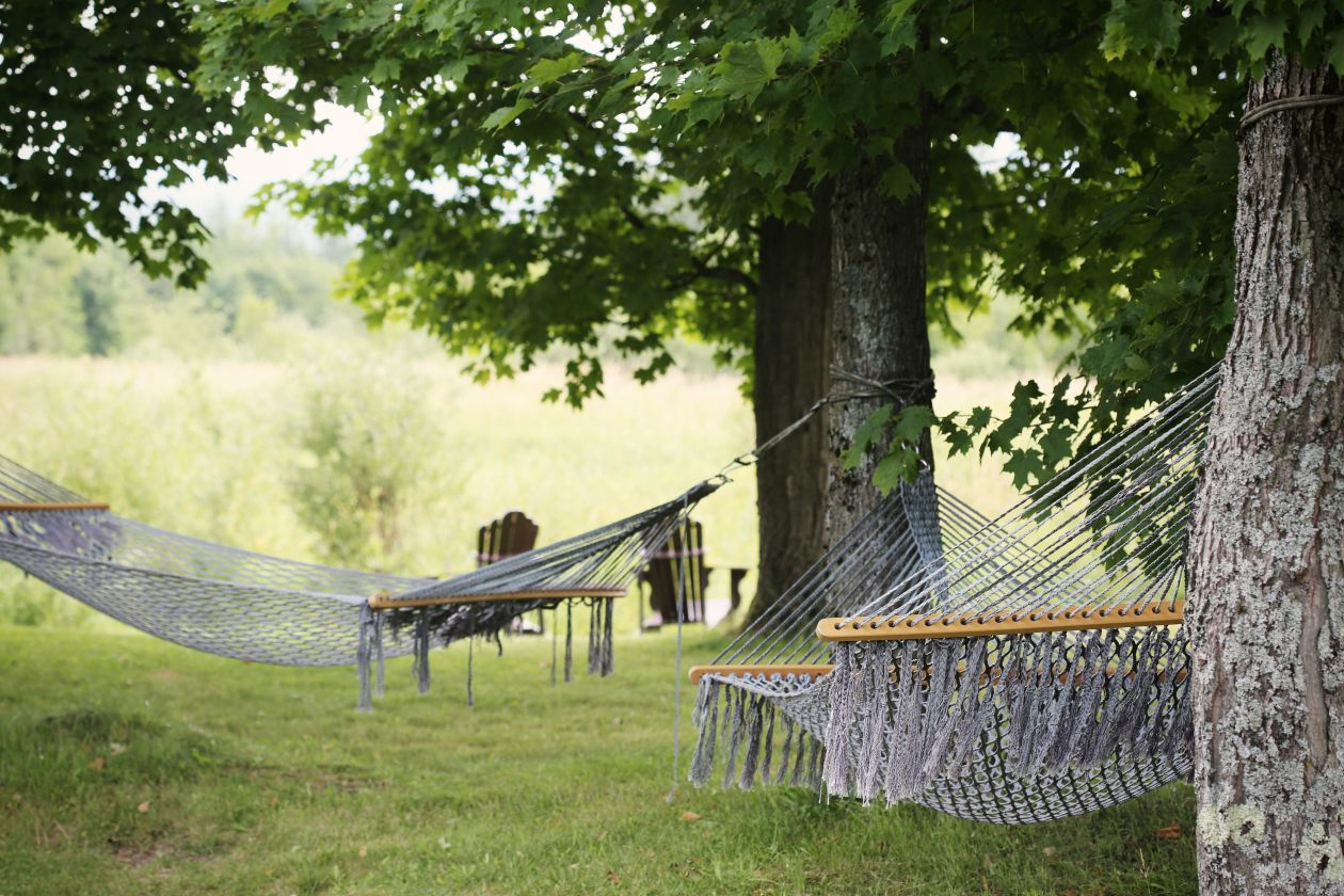 "Free photo ""Hammock"""