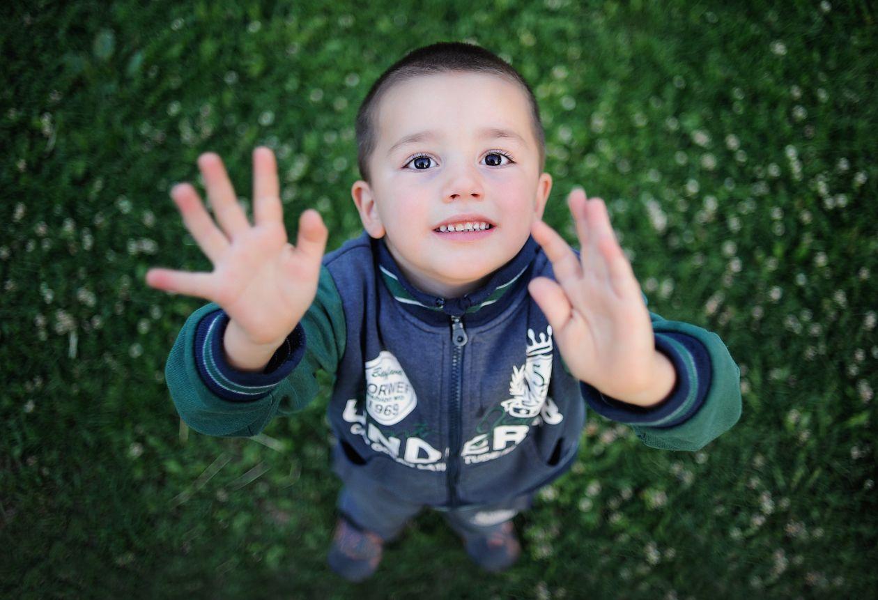 "Free photo ""Adorable"""