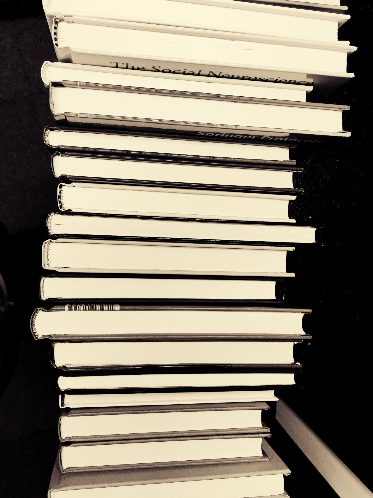 "Free photo ""Black and-white"""