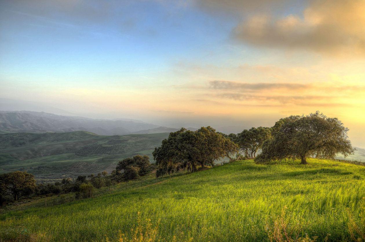 "Free photo ""Countryside"""