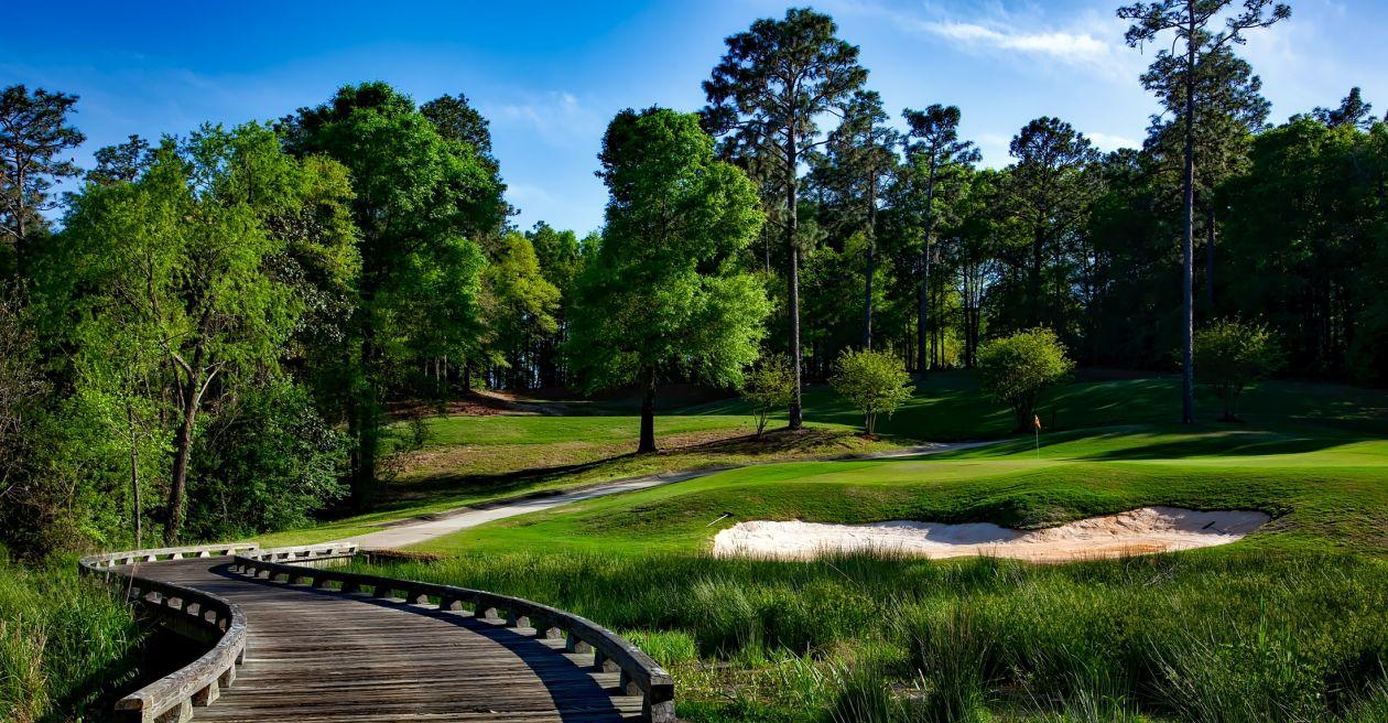 "Free photo ""Golf course"""