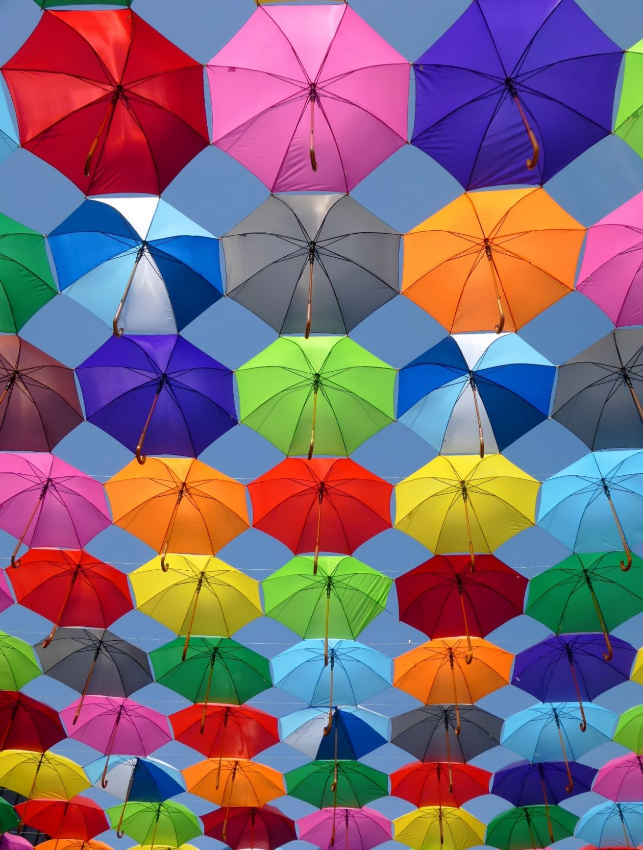 "Free photo ""Colorful"""