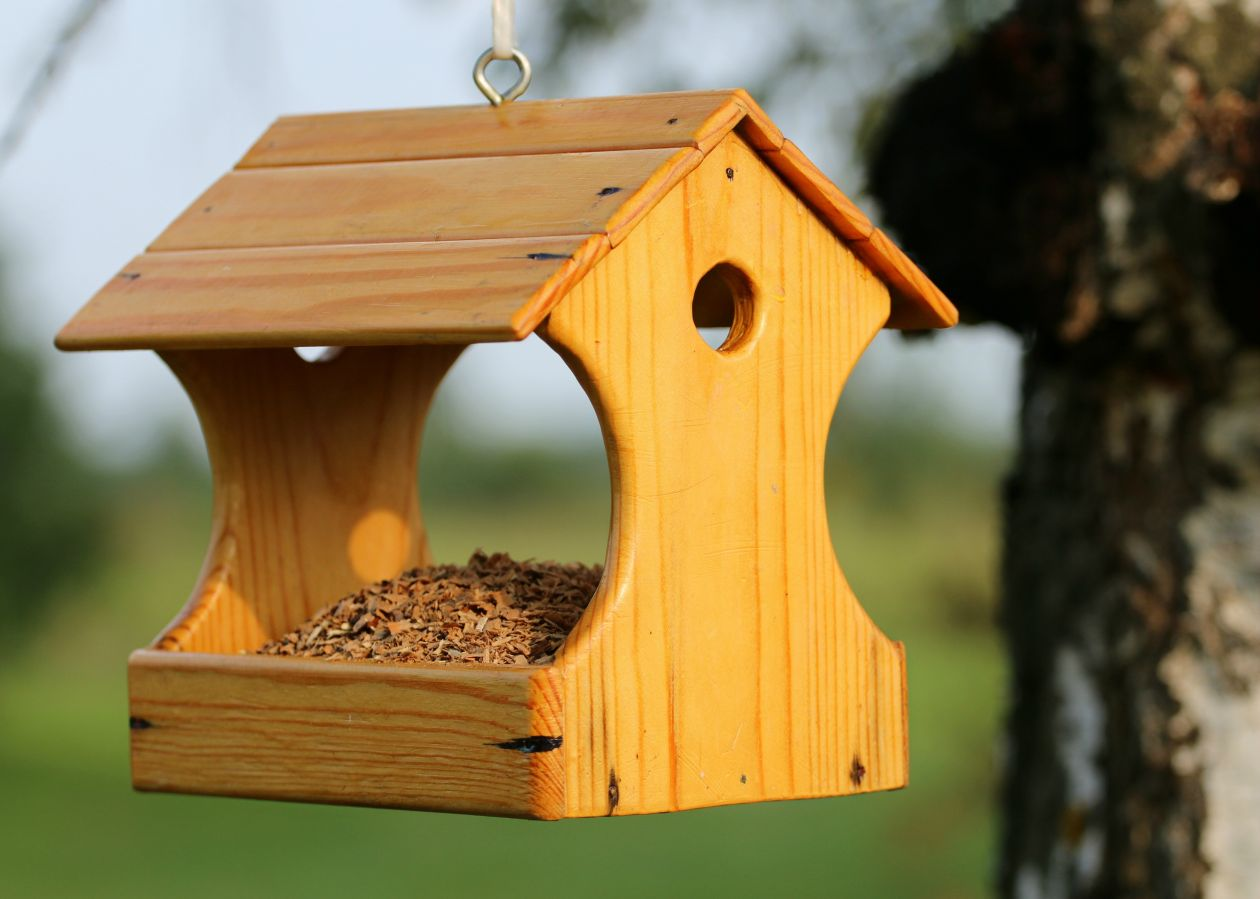 "Free photo ""Birdhouse"""