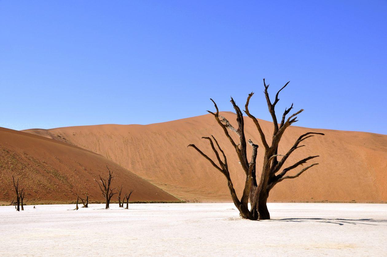 """Free photo """"Desert"""""""