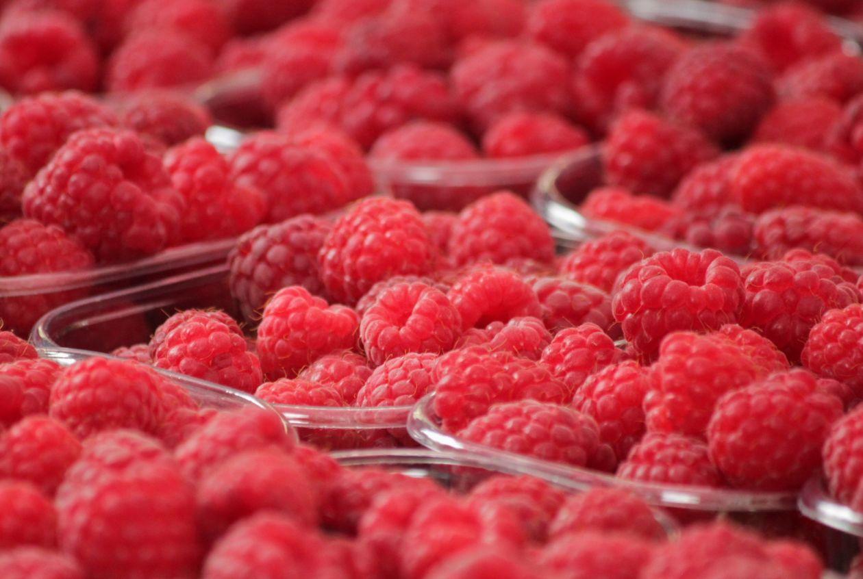 """Free photo """"Berries"""""""
