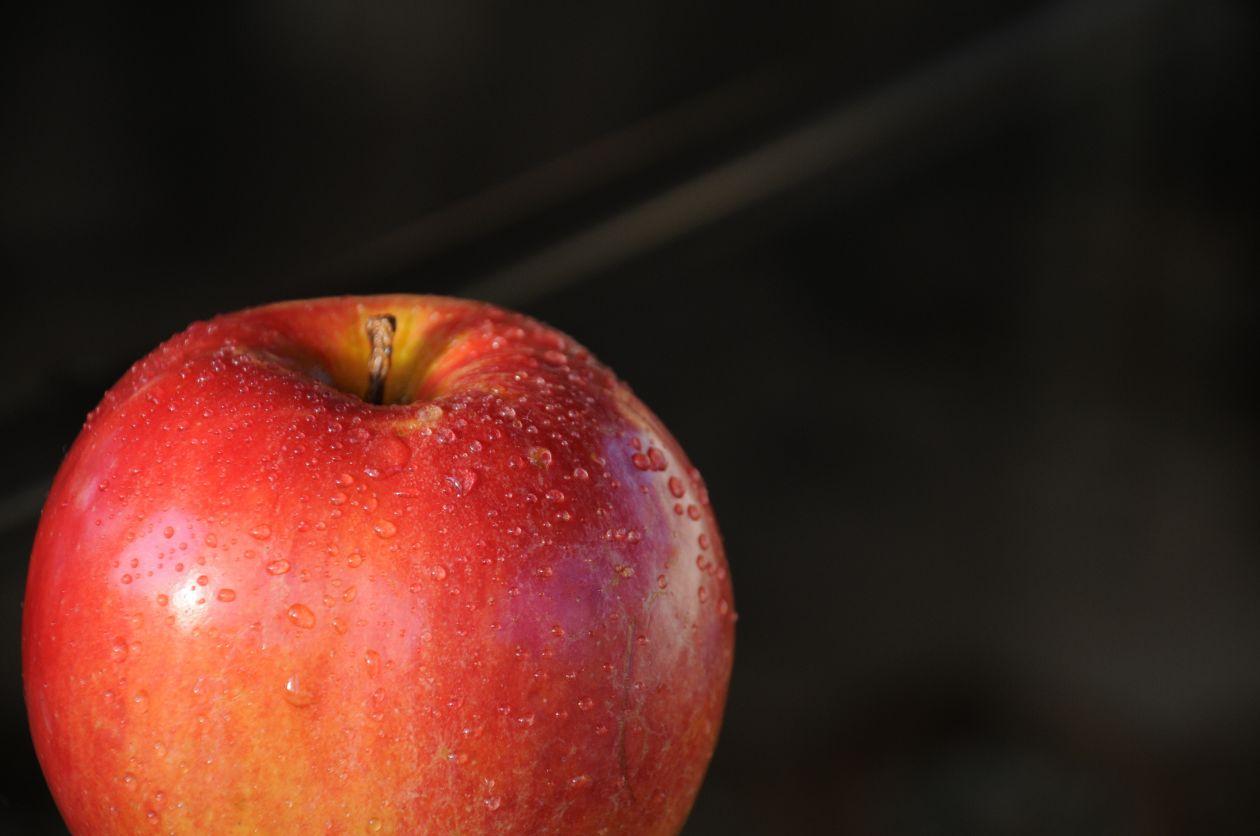 "Free photo ""Apple"""