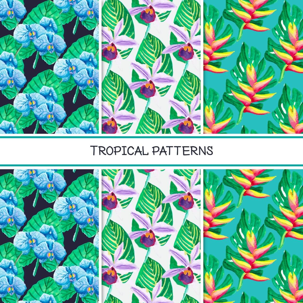 "Free vector ""Tropical summer pattern collection"""