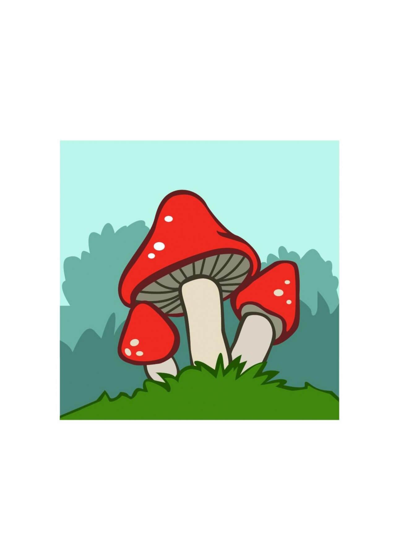 """Free vector """"Mushrooms vector illustrations """""""
