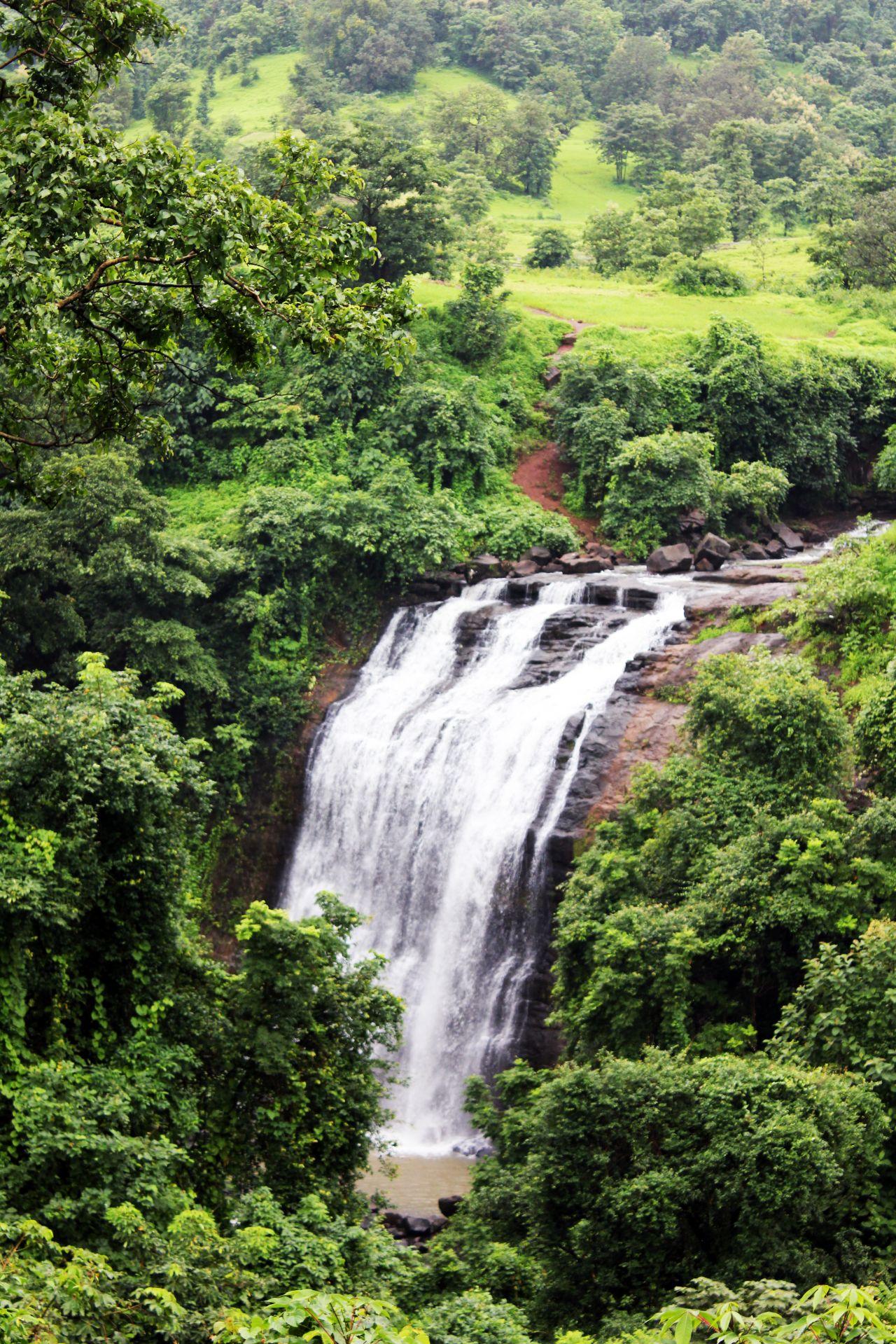 "Free photo ""Waterfall Greenery"""