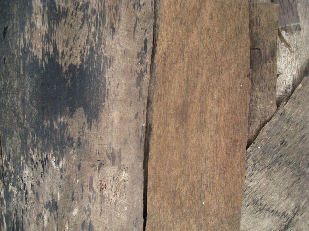 "Free photo ""Wood Planks"""